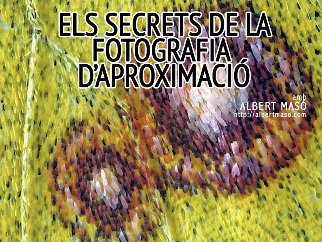 Els Secrets de la Fotografia Macro