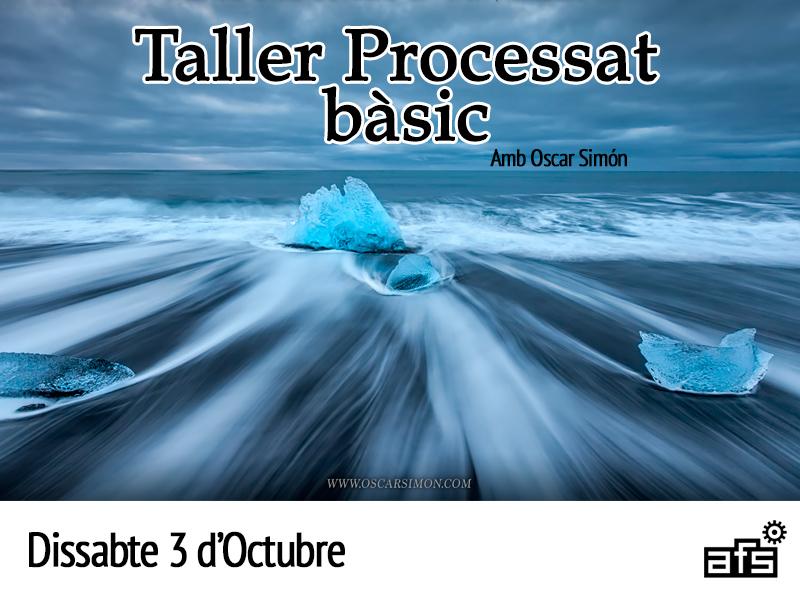 Cartell2-Taller-Processat-Basic-2015