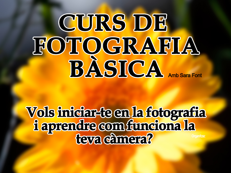 Cartell2-Curs-Foto-Basica-2016