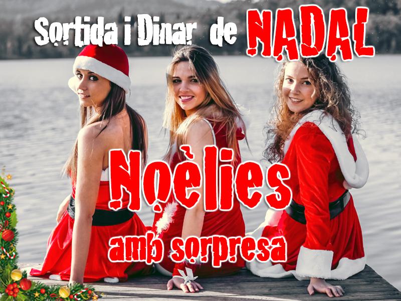 Cartell2-Noelies-2015