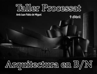 Taller Processat d'Arquitectura en B/N