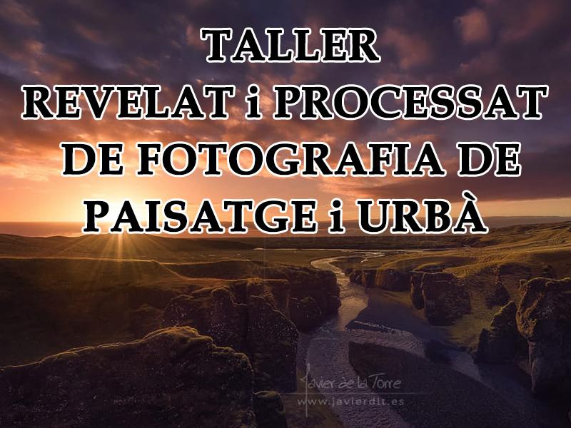 Cartell2-Taller-Processat-JavierdelaTorre-2017